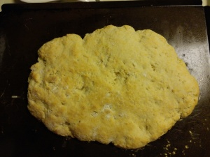 shortcakebisquits 037